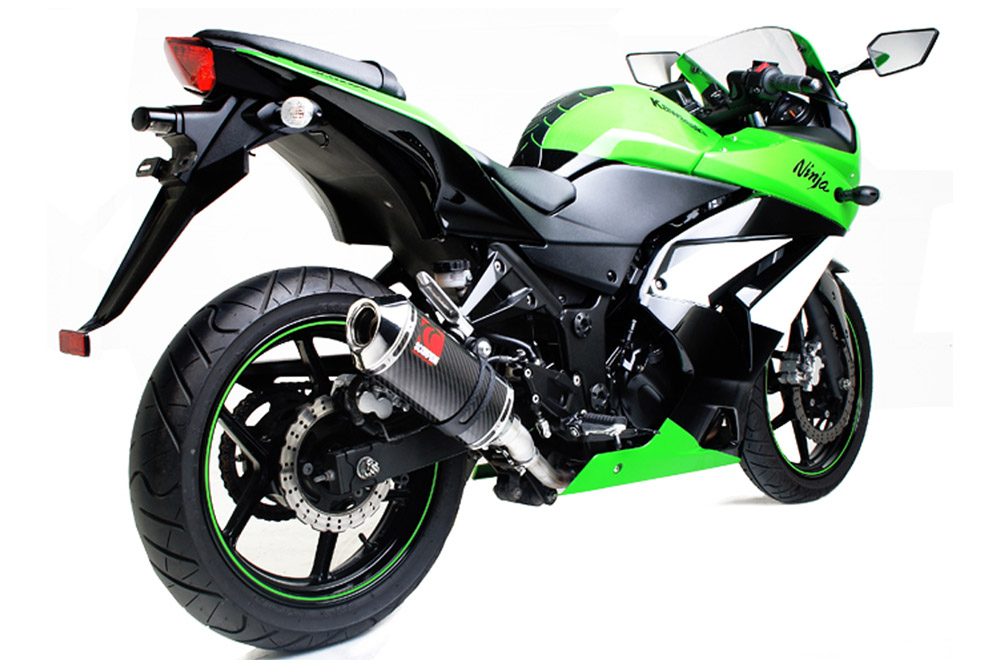 Ninja-250,08-,KA84--Carbon-Factory-3-qtr-View-1000