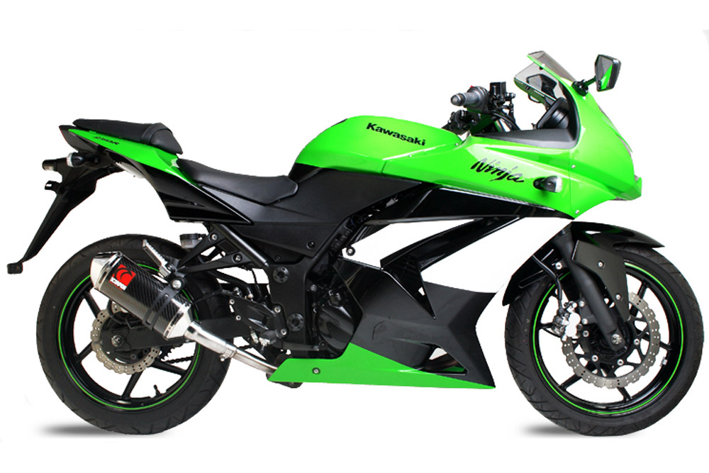 Ninja-250,08-,KA84--Carbon-Factory--Side-View-1000